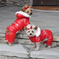 Red Ruffin It Dog Snow Suit size medium