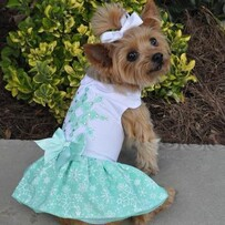 Turquoise Crystal Dog Dress with Matching Lead size small